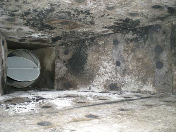 HVAC Mold Removal 1