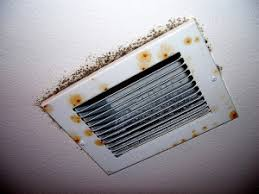 HVAC Mold Removal 2